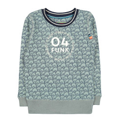 4funkyflavours sweater